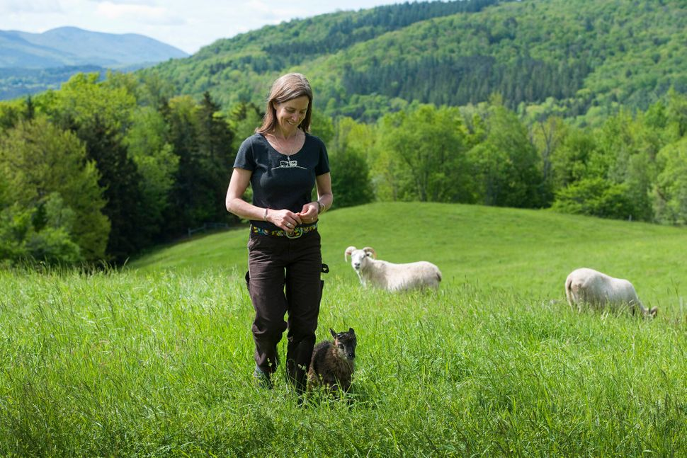Helen Whybrow with an Icelandic lamb at Knoll Farm in Waitsfield, Vermont.