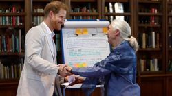 Yes, That Is Prince Harry Dancing With Legendary Scientist Jane