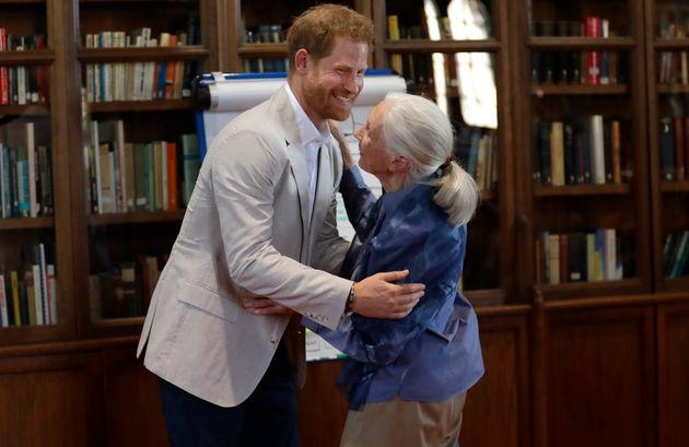 Watch Prince Harry Dance With Legendary Scientist Jane
