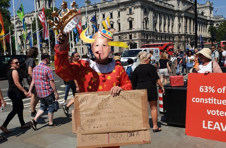Clown protestor near Parliament