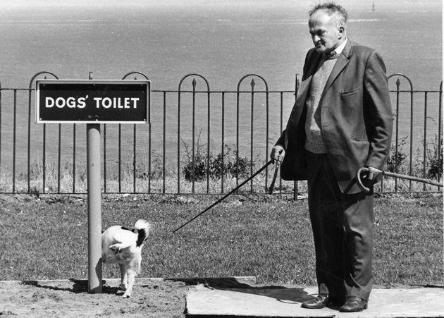 Κλικ στη σωστή στιγμή: Οι πιο αστείες φωτογραφίες
