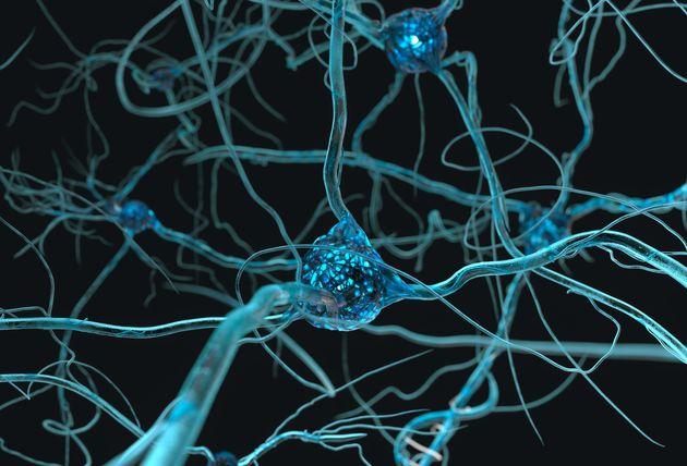 Anche il cervello cambia dopo il tumore: disturbi cognitivi per il 75% dei