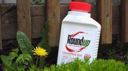 Roundup: les dommages infligés à Monsanto réduits