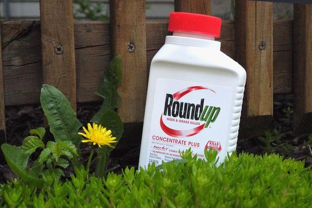 Monsanto, qui produit le Roundup, est concerné par des milliers de procédures judiciaires...