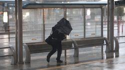 6호 태풍 나리가 27일 일본에
