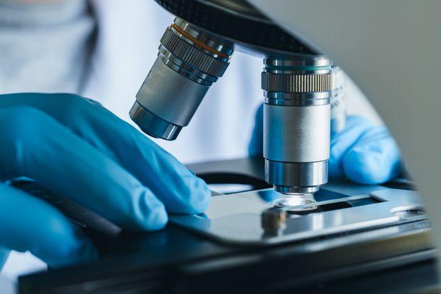 大会期間中は、感染症の調査(サーベイランス)体制の強化が予定されている