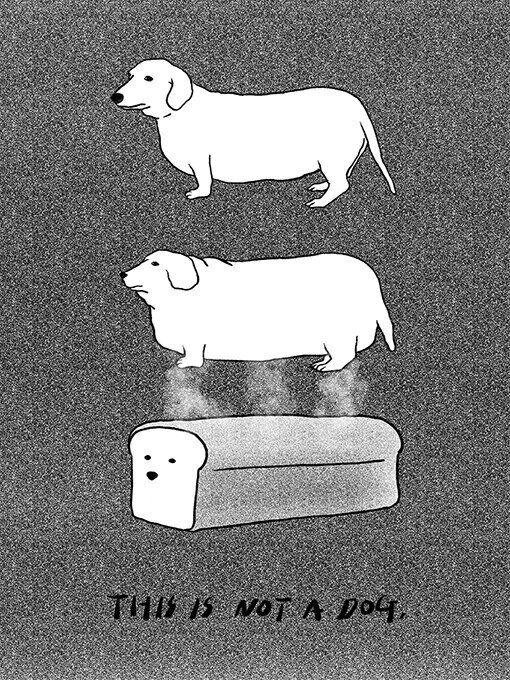 강아지와 고양이를 둘러싼 100인의 그림