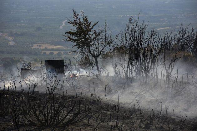 Μπαράζ πυρκαγιών σε όλη τη χώρα μέσα σε λίγες ώρες - Συναγερμός στην