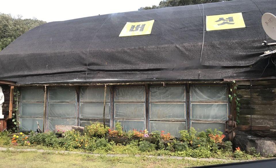 7월14일 찾은 경기도 고양 XX경매장의 외관은 버섯재배를 위한 비닐하우스처럼