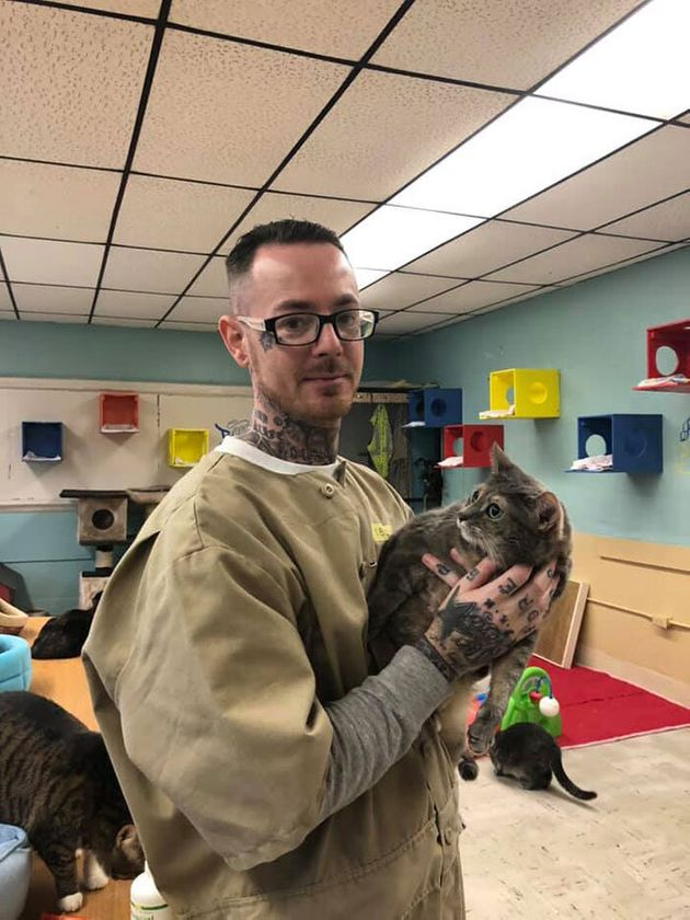 미국의 어느 교도소에서는 재소자들이 고양이를