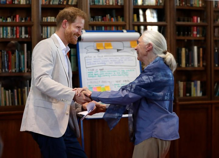 Prince Harry and Dr. Jane Goodall hold hands as he attends the Roots & Shoots Global Leadership Meeting at Windsor Castle on July 23 in England.