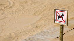 Ni llevar la sombrilla oxidada, ni hacer castillos de arena: las prohibiciones más locas de las playas