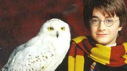 Comemoramos o aniversário de Harry Potter com um ranking dos 8 filmes estrelados pelo