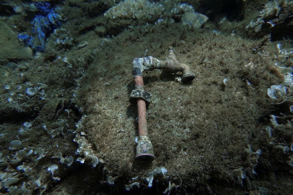 Ο «κόλπος με τα πλαστικά κοράλλια» του Αιγαίου: Η τρομακτική ανακάλυψη στον βυθό της
