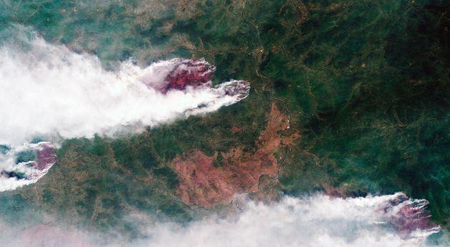 La Siberia in fiamme preoccupa. Trump offre aiuti a
