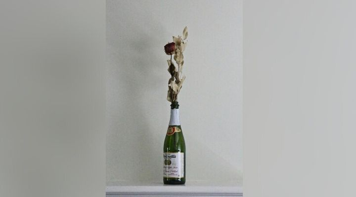 Emmy Harrison keeps mementos of her past relationships, including this dried flower.
