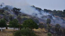 Ναύπλιο: Υπό μερικό έλεγχο η πυρκαγιά στο Κουτσοπόδι