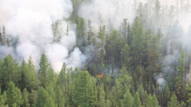 This photo taken on Monday, July 29, 2019 and released by Press Service of the Ministry of Forestry of the Krasnoyarsk Territory, shows an air view of a forest fire in the Boguchansk district of the Krasnoyarsk region, Russia Far East. Hundreds of Russian towns and cities are shrouded in heavy smoke from wildfires in Siberia and the Far East Thursday, and the blazes appear to be spreading in remote terrain. (Maria Khlystunova, Press Service of the Ministry of Forestry of the Krasnoyarsk Territory via AP)