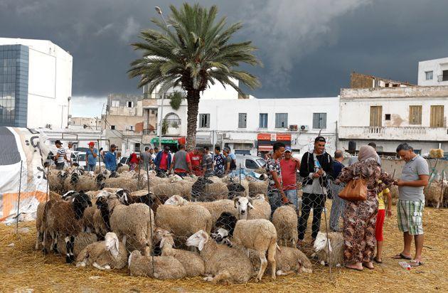 L'Aid El Idha, la fête religieuse qui n'échappe pas à la foudre d'internet