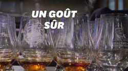 Cette langue artificielle peut analyser votre whisky mieux que