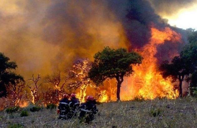 Six pyromanes présumés poursuivis en justice dont 2 en mandat de dépôt