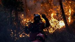Detienen 'in fraganti' al autor de cinco incendios forestales en