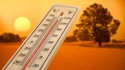 Vague de chaleur dans plusieurs régions du royaume jusqu'à