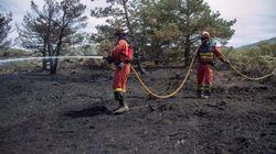 Controlados los dos incendios de Guadarrama tras quemar más de 600