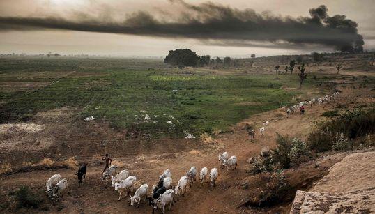 Πώς η κλιματική αλλαγή θα επηρεάσει στο μέλλον τα αποθέματα τροφίμων