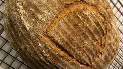Questo pezzo di pane è stato preparato con un lievito di 4500 anni fa: