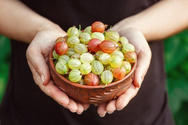 Groselha: Conheça a poderosa frutinha que tem mais vitamina C do que a