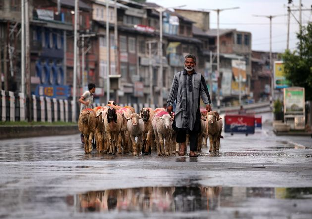 A man walks with a herd of sheep in a deserted road during restrictions in Srinagar August 8,