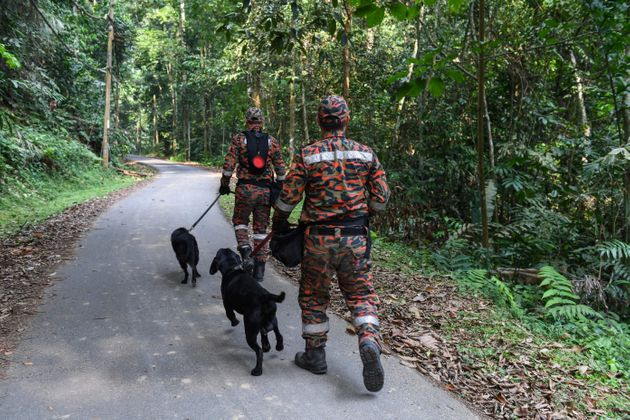 Members of a Malaysian K-9 unit taking part in a search and rescue operation for the missing