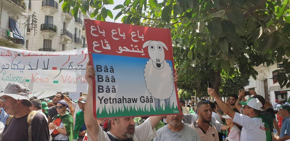 La manifestation d'Alger en quelques