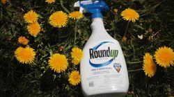 Les États-Unis vont bannir les étiquettes qualifiant le glyphosate de