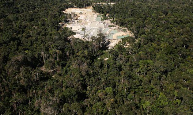 Alemanha suspende investimento milionário na Amazônia por causa de alta no