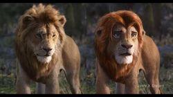 超実写版「ライオン・キング」、顔だけアニメっぽくした動画が150万再生