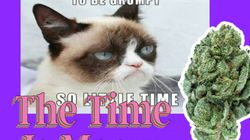 Kerala, Cannabis, Cats.com: The Time is Meow For This California Cannabis