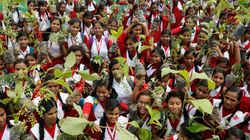 Indians Plant 220 Million Trees In A Single