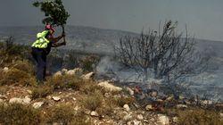 Φωτιές σε Έβρο, Μεσσηνία και