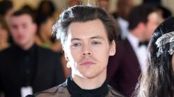 Harry Styles Just Turned Down A Huge Movie