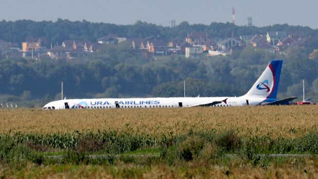 A Russian Ural Airlines' A321 plane is seen after an emergency landing in a cornfield near Ramenskoye, outside Moscow, Russia, Thursday, Aug. 15, 2019. Russian Ural Airlines' A321, carrying 226 passengers and a crew of seven, collided with a flock of birds while taking off Thursday from Moscow's Zhukovsky airport. Russian health authorities said that 23 people, including five children, have been hospitalized with injuries. (Andrei Nikerichev, Moscow News Agency photo via AP)