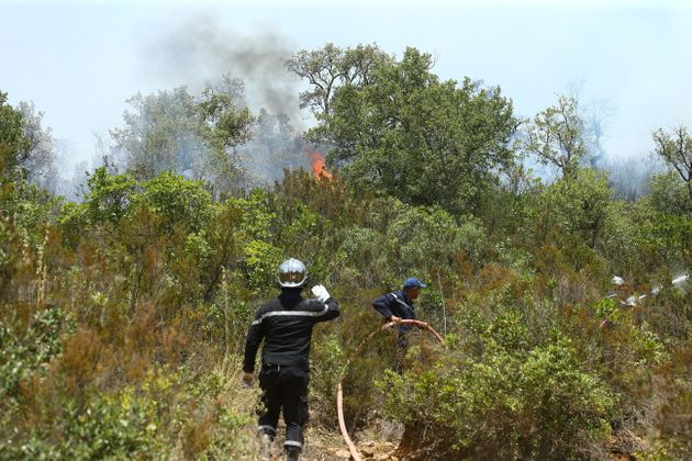 Depuis le début de l'année, 190 incendies ont ravagé près de 1850 hectares de