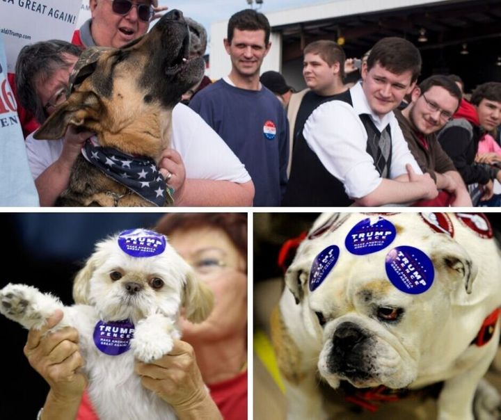 It doesn't matter how much support these dogs throw behind President Trump, he's not interested.