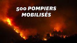 Un feu près de Carcassonne a ravagé environ 900 hectares de