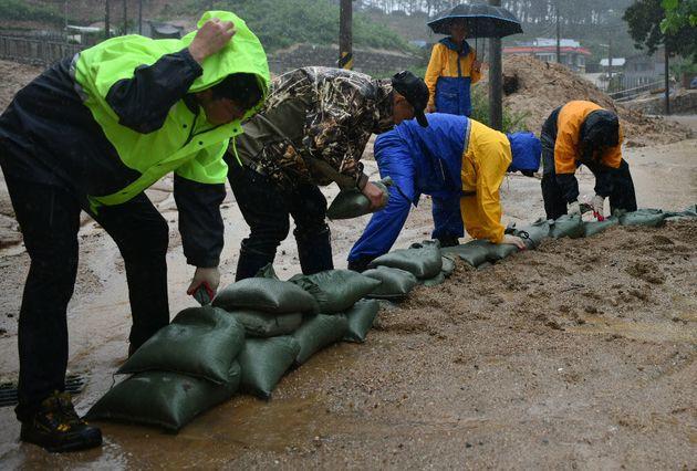 태풍 크로사의 영향으로 강원 전역에 비가 내린 15일 강원도 속초시 장천마을 산불피해 현장에서 공무원들이 토사 유출 방지를 위해 모래주머니를 쌓고