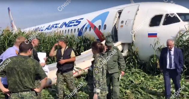 Aereo colpito da gabbiani |  pilota  eroe  atterra in un campo di grano e salva