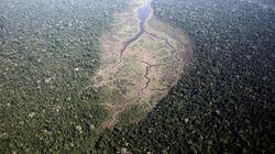 Ο Αμαζόνιος σε κατάσταση έκτακτης ανάγκης: Η Νορβηγία «παγώνει» χρηματοδότηση έως και 35