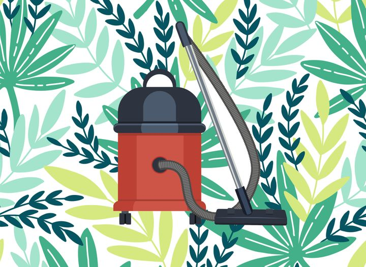 Vacuums, Plants And All The Other Things We Never Thought We'd Care About In Our Late 20s | HuffPost Life