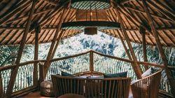 Une spectaculaire cabane en bambou à louer dans la jungle
